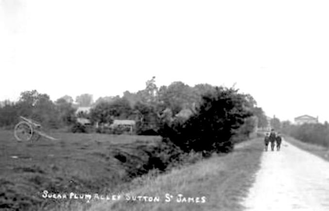 Sugar Plum Alley, Sutton St James