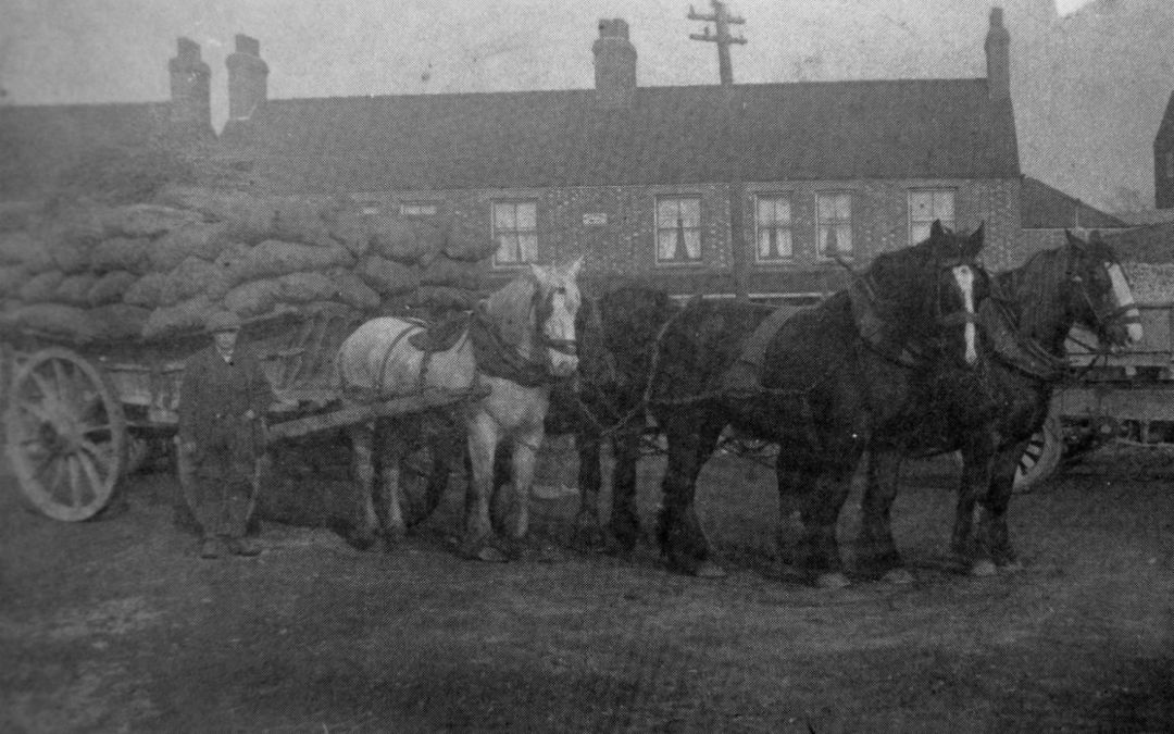 Horse & Cart at Holbeach Railway Station 1922