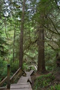 The Schooner Cove Trail