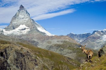 Matterhorn_with_Carpex_Ibex_13