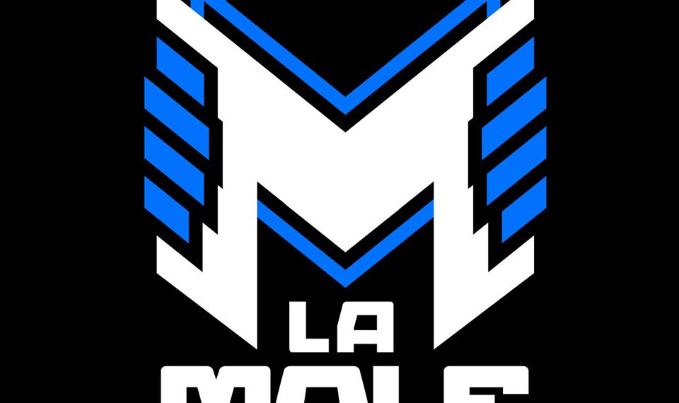 Elencos de Smallville y Power Rangers visitarán La Mole 2020