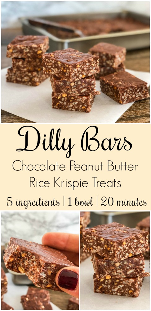 Dilly Bars Pin