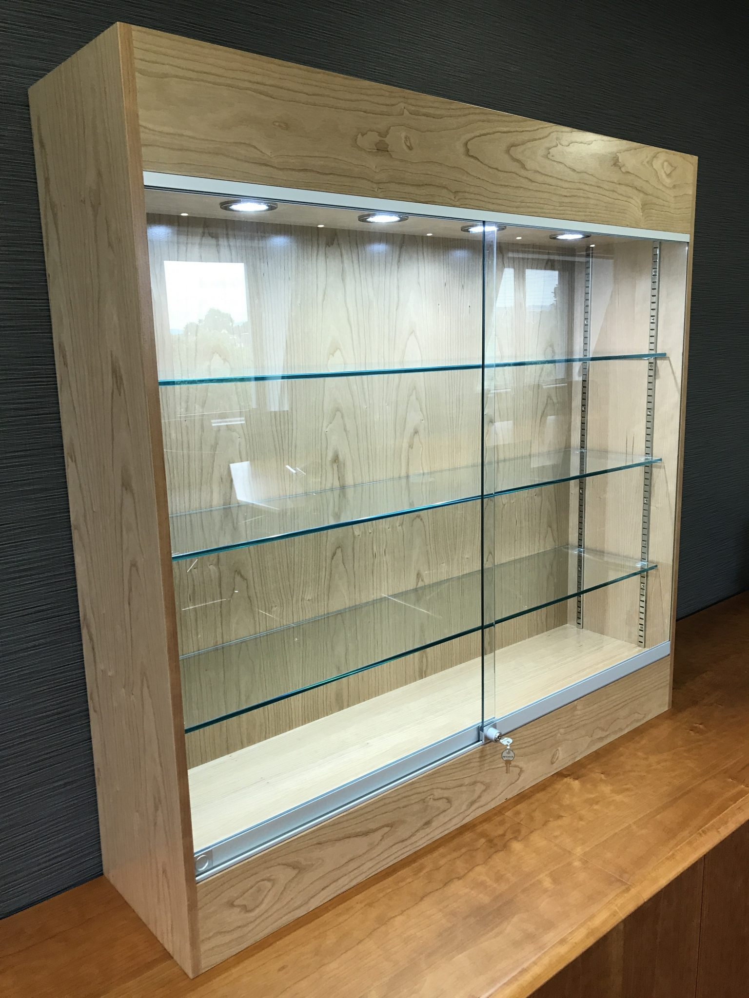 Wall mounted trophy display cabinet with LED lighting