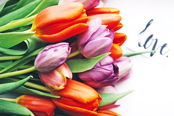 Tulips from a lover by Brigitte Tohm on unsplash