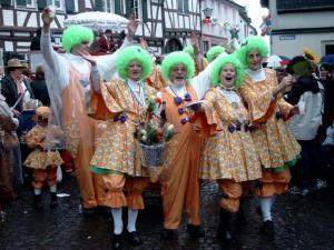 Eine Fußgruppe beim Karnevalsumzug in Erpel