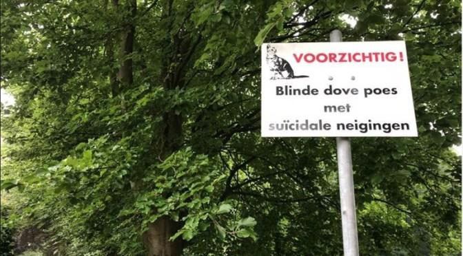 Gebrek, schaamte en zoektocht bij suïcidaliteit