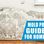 Mold prevention guidelines for homeowners