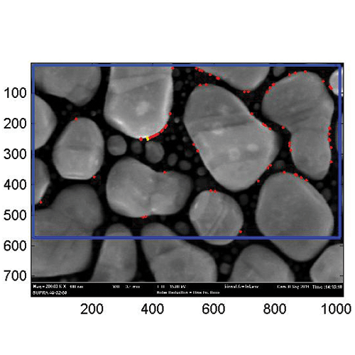 SEM Image Without AVI Platform