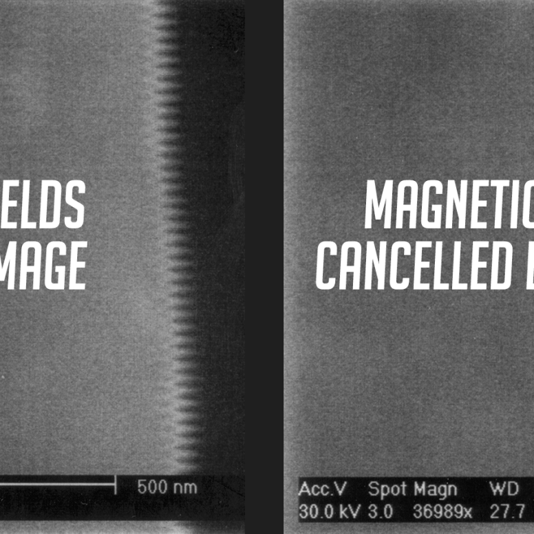Herzan Highlight: Learn How Removing Magnetic Fields Unlocks the Capabilities of SEMs/TEMs