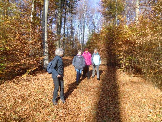 Herbstwanderung Huysburg-Rundweg