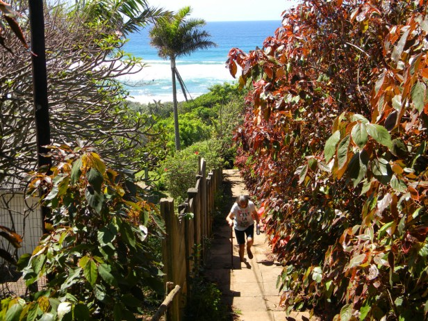 Stairs from Elysium beach to the road above