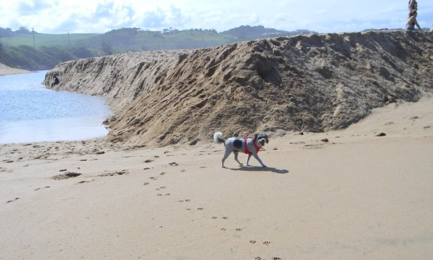 Sandbank in front of Mtwalume river mouth