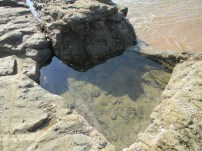 Rockpool at Ifafa Beach