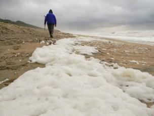 Foam on the beach