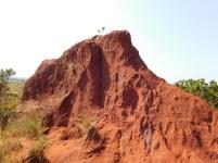 Little Red Desert 5