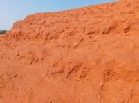 Little Red Desert 6