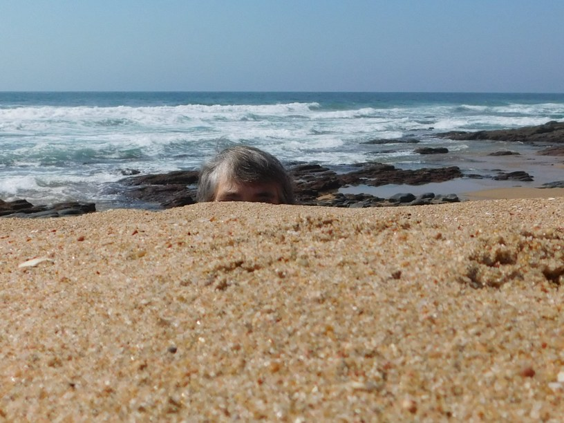 Hiding behind the sandbank