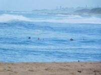 Stiebel Point between Umzumbe and Pumula Beach