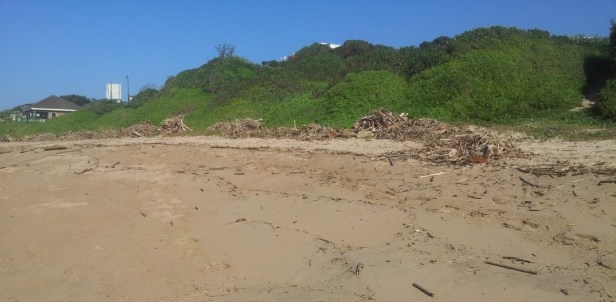 Piles of driftwood waiting to be burned at Umtentweni Beach