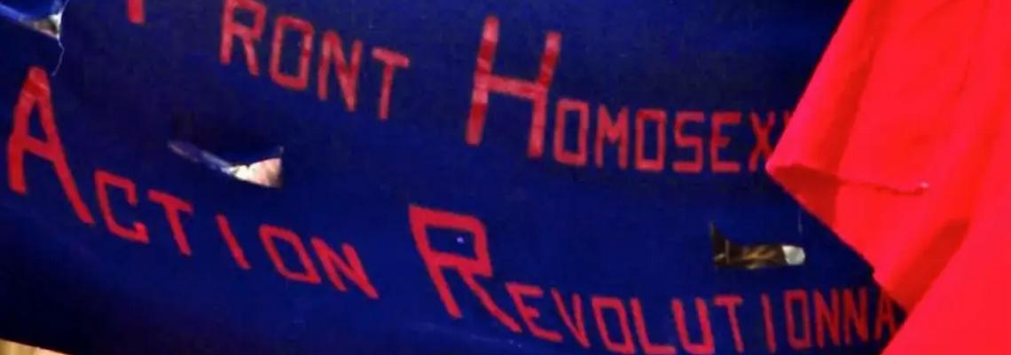 front homosexuel d'action revolutionnaire heteroclite