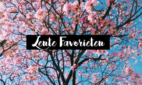 Lente favorieten bloesem