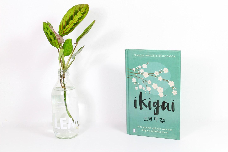 Boekrecensie   Ikigai – Het Japanse geheim voor een lang en gelukkig leven