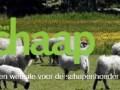 logo ops site het schaap 2018