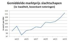 Grafiek toont stijgende lijn gemiddeld marktprijs van slachtschapen