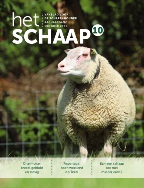vakblad Het Schaap cover oktober 2020