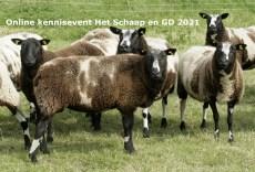 Beeldmerk Online kennisevent Het Schaap en GD 2021