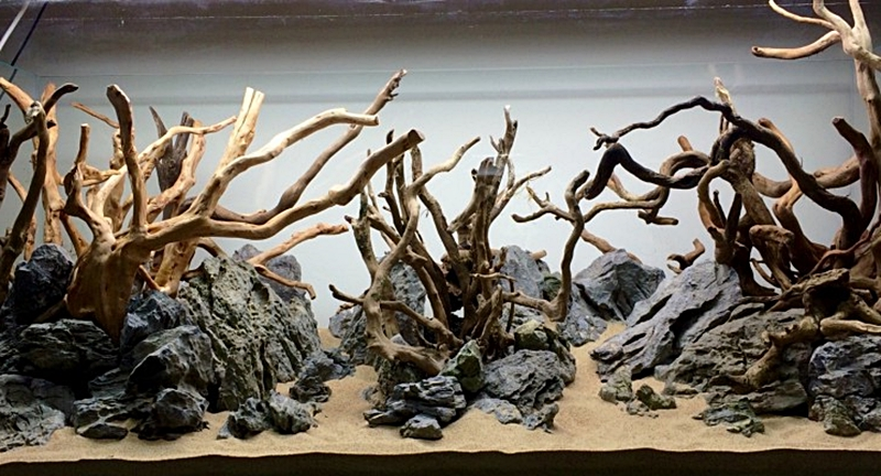 Kayu Aquascape