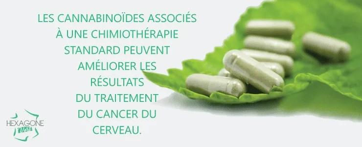 Les cannabinoïdes associés à une chimiothérapie standard peuvent améliorer les résultats du traitement du cancer du cerveau