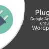 Plugin Google Analytics untuk Wordpress