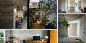 CASA VILA MATILDE HOUSE – Terra e Tuma Arquitetos