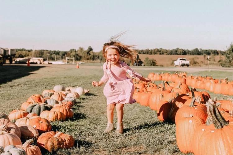 fabkids heyitsjenna pumpkin patch fall