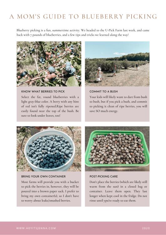 blueberry picking tips mom with kids heyitsjenna