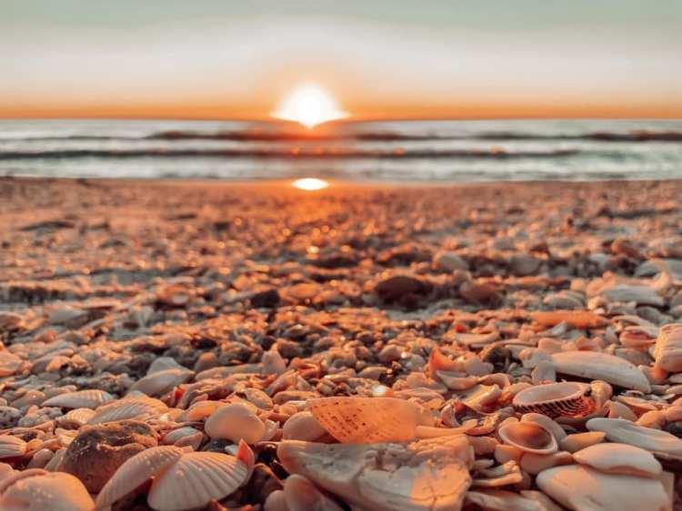 sunset in bonita springs shelling low tide