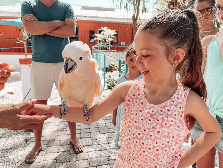 bonita springs wonder gardens, things to do with kids
