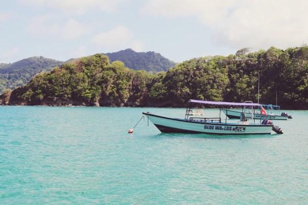 Blue Waters Diven-  Speyside Tobago