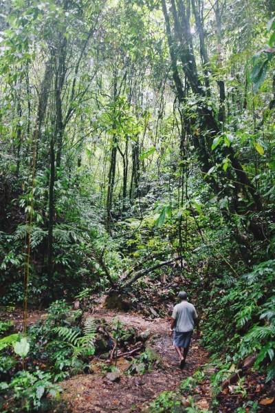 Newton George, Bird Watching, Tobago