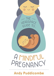 a mindful pregnancy andy puddicombe