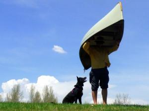 canoe-dog-heysmokies
