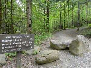 big-creek-trailhead-heysmokies