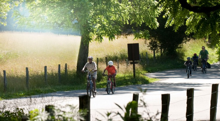 Bicycle Mornings in Cades Cove on Wed and Sat
