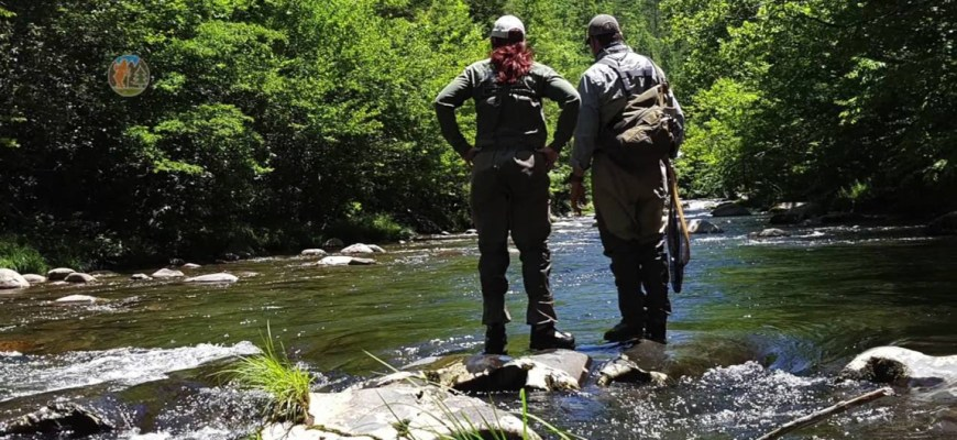 Trout fishing in the Smokies!