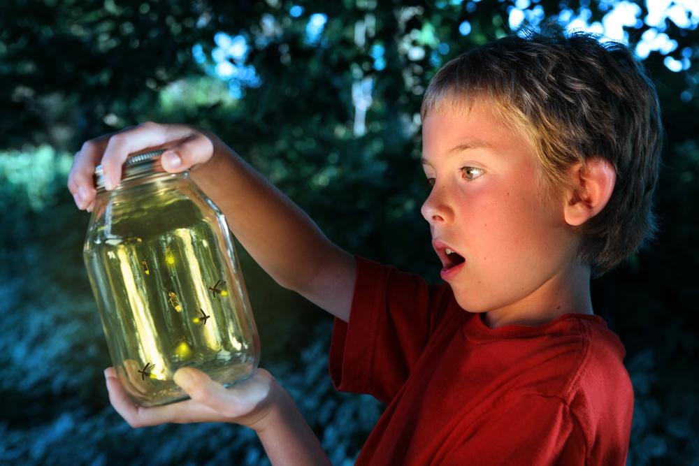 Kids Catching Fireflies Kirk H Neely