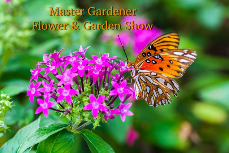 Master Gardener Flower and Garden is fun for the whole family!
