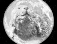 The Smoky Mountain Beaver moon is on the rise!