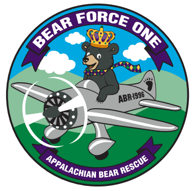 Appalachian Bear Rescue's Mardi Bear event will be fun for the entire family!