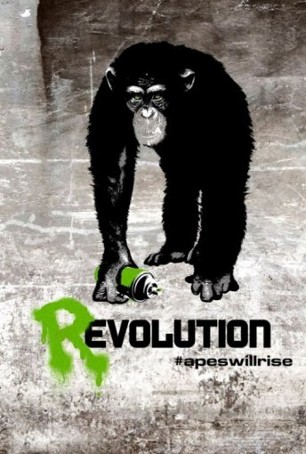 Rise of the Planet of the Apes Progression Poster 2